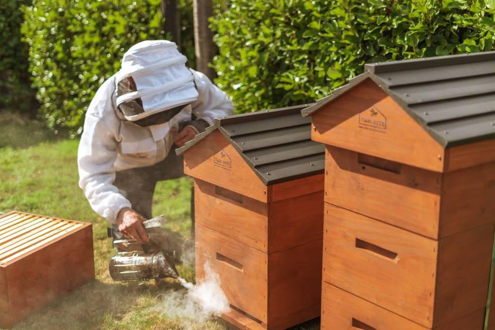 Hive Maintenance